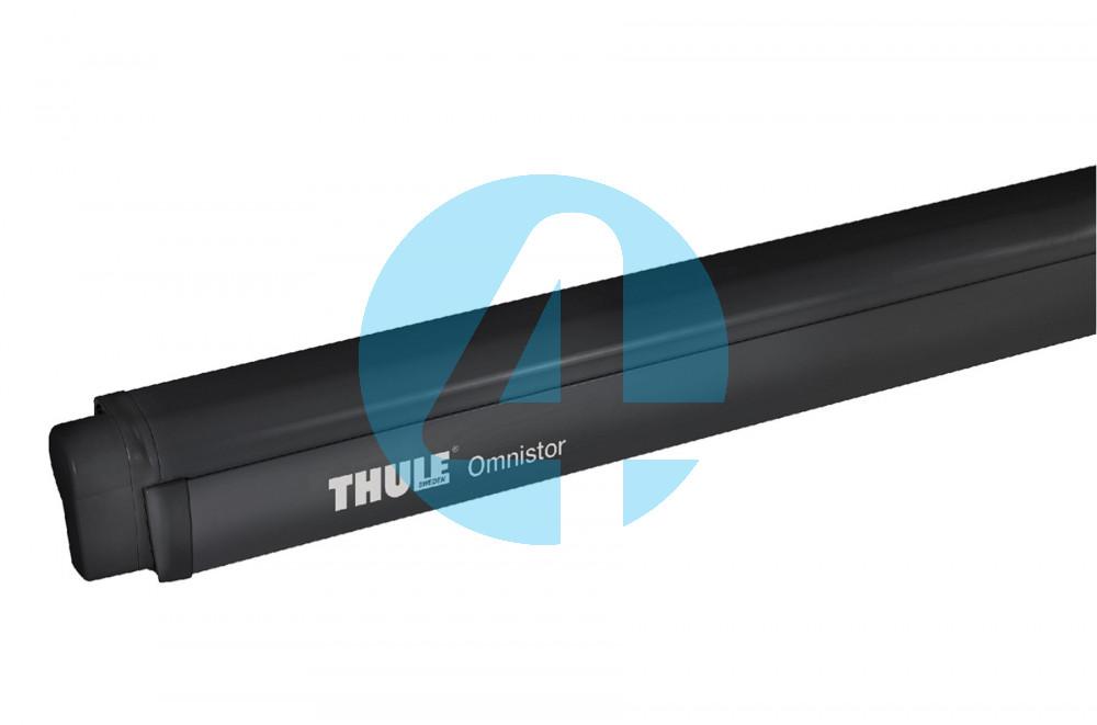Thule 4900